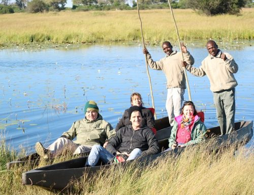 THE OKAVANGO DELTA – AN ADVENTURE OF A LIFETIME ON WATER, AIR AND ROAD