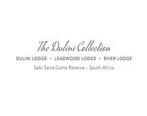 The dulini collection logo