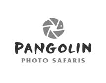 pangolin photo safaris logo