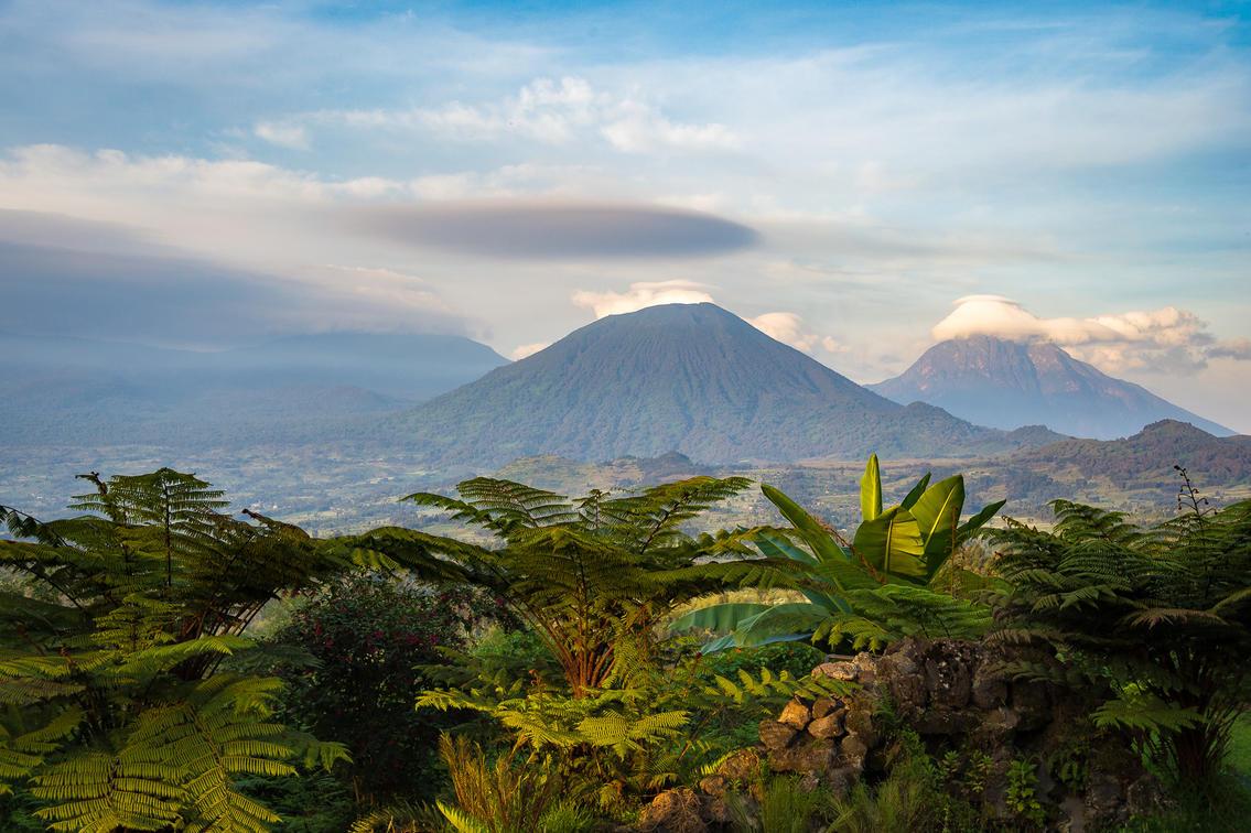 Rwanda image 4