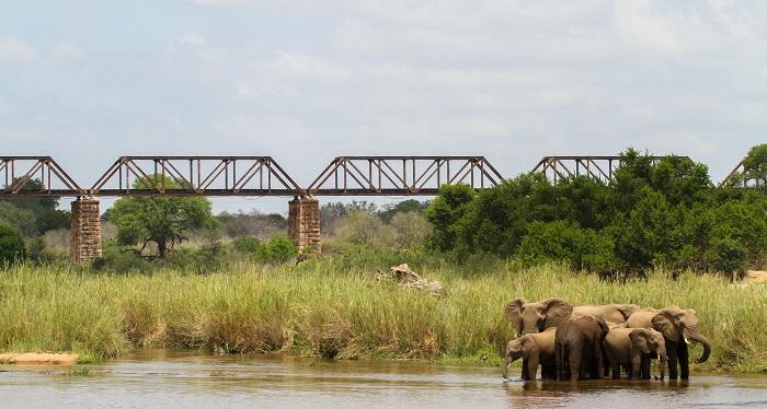 Skukuza, Kruger