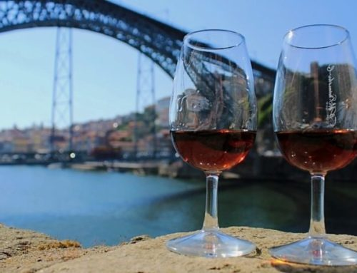INTRODUCING OUR NEW PORTUGUESE WINE SAFARI ITINERARIES